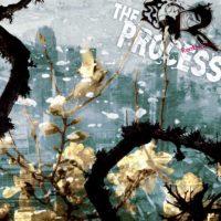 "the process / rentokiller split 7"""