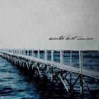 winter dust - autumn years LP
