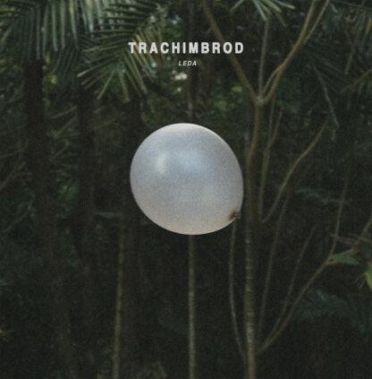 trachimbrod - leda LP