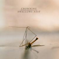 "crowning / swallow's nest split 7"""