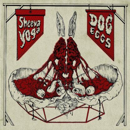 sheeva yoga / dog eggs split LP