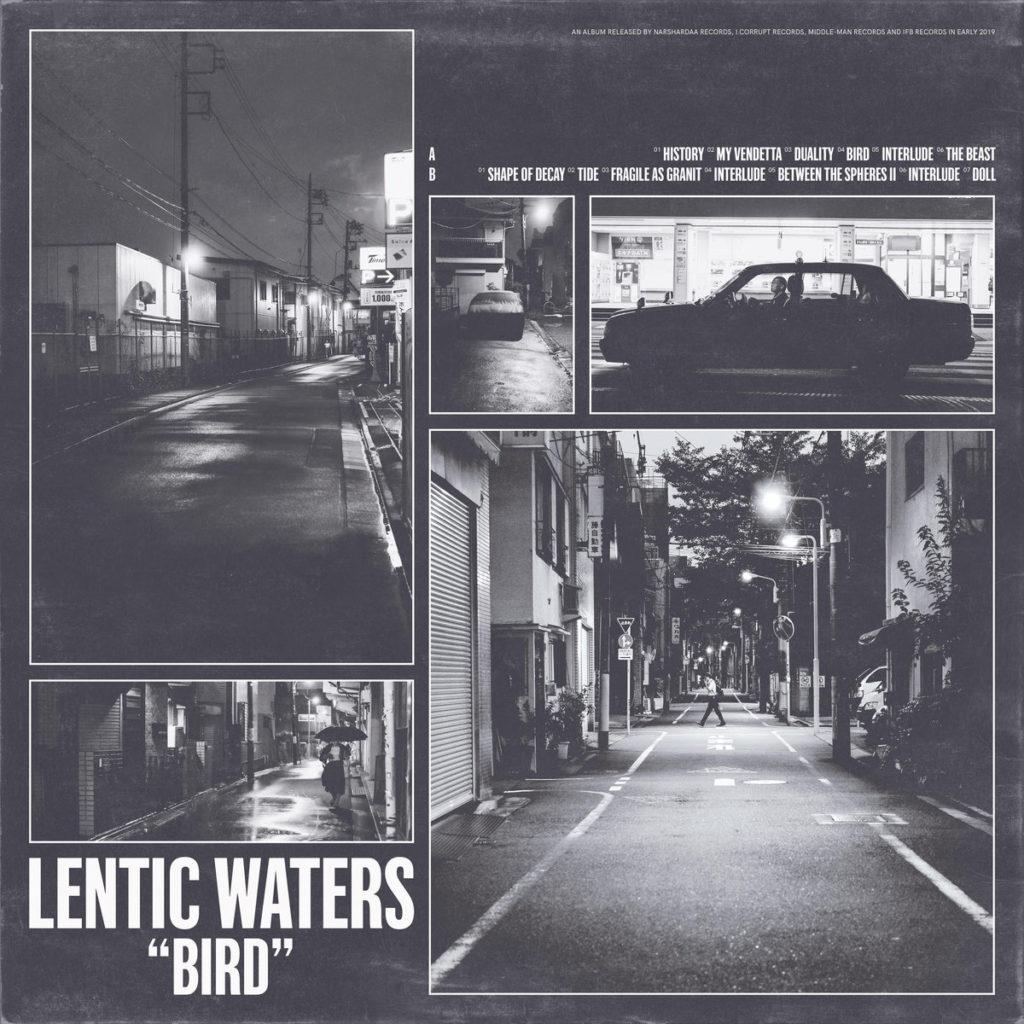 lentic waters - bird LP