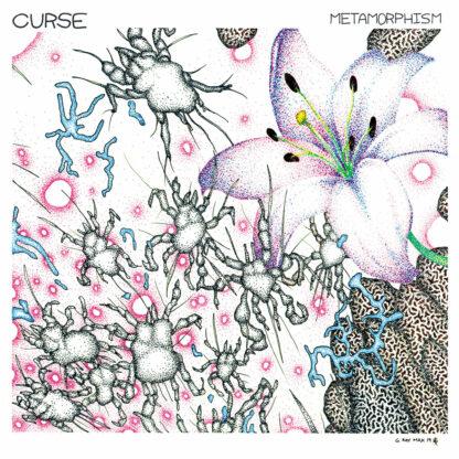 curse - metamorphism LP